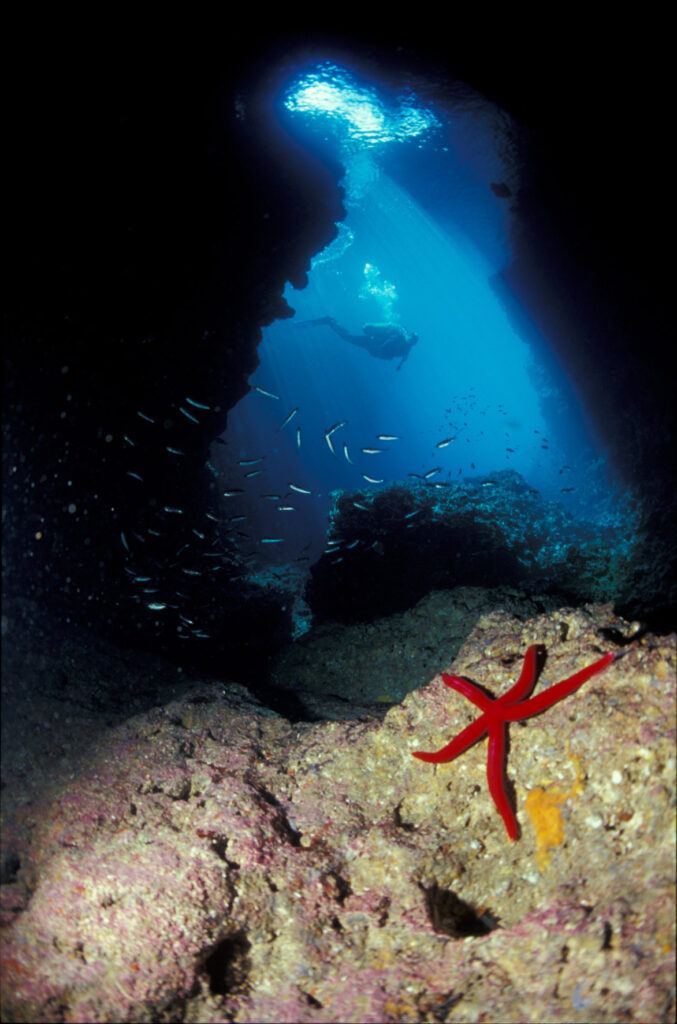 Zona A - ingresso immersione Grotta del Capo. Ph. Consorzio Plemmirio